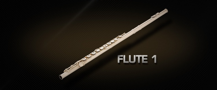 Vienna Symphonic Library Flute 1 - Full Library image 1