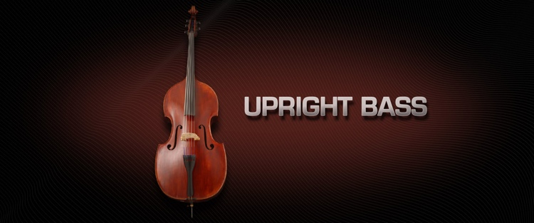 Vienna Symphonic Library Upright Bass - Standard Library image 1