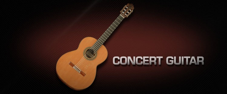 Vienna Symphonic Library Concert Guitar - Standard Library image 1