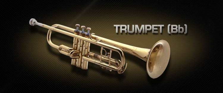 Vienna Symphonic Library Trumpet (Bb) - Standard Library image 1