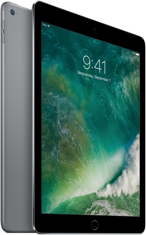 Apple iPad Air 2 Wi-Fi 128GB - Space Gray image 1