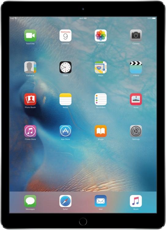 Apple iPad Pro Wi-Fi 32GB - Space Gray image 1